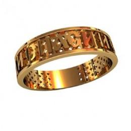 Охранное кольцо 210310
